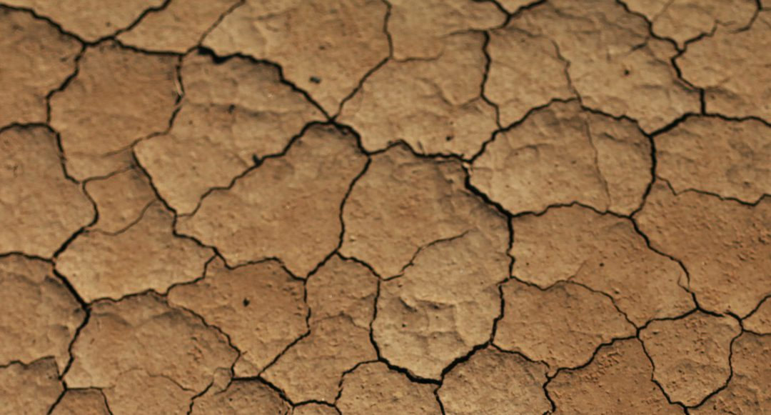 Water Conservation More Important than Ever During Drought